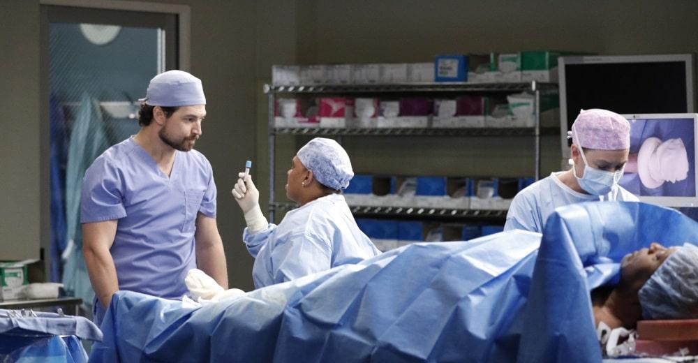 Grey's Anatomy Staffel 17